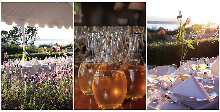 Washington Winemaker dinners benefits Seattle Children's Hospital.