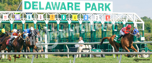 Awake at T Wire winning at Delaware Park on 9/19/15