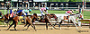 winning at Delaware Park racetrack on 6/2/14