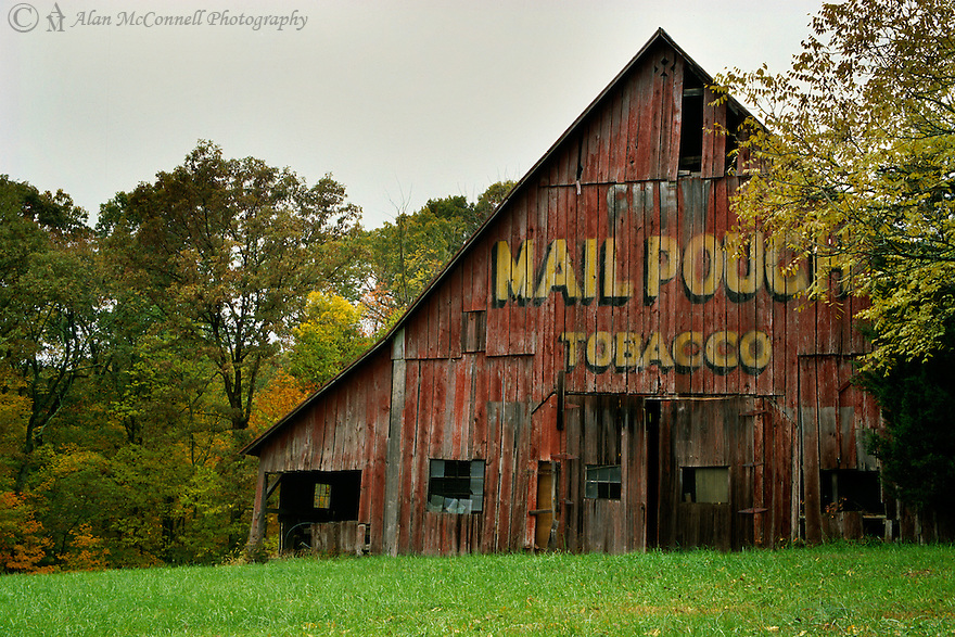 """""""Brown County Barn""""<br /> 2005<br /> <br /> Remnants of Americana can be seen along a rural road in southern Indiana.  An advertisement for Mail Pouch Tobacco is evident on the side of a fading red barn.  Emerging autumn colors lure visitors to Brown County.  Set against the backdrop of the fall palette, a well-kept barn adds nostalgia to a casual drive along scenic routes."""