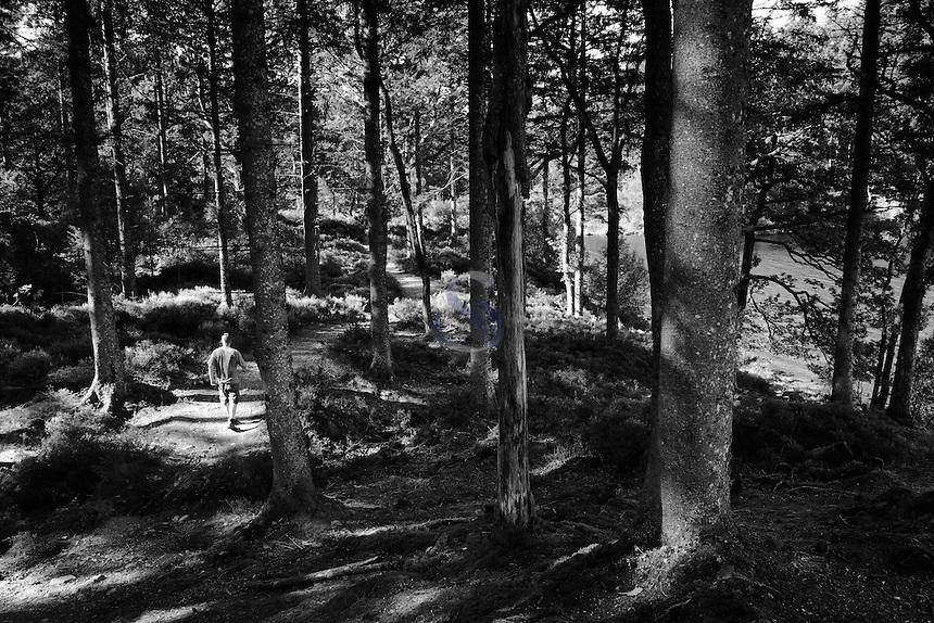 Walking through Loch Ard Forest beside Loch Ard, Loch Lomond and the Trossachs National Park, Stirlingshire