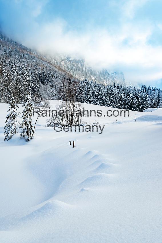 Deutschland, Bayern, Chiemgau, Inzell: Winterlandschaft beim Ortsteil Einsiedl | Germany, Upper Bavaria, Chiemgau, Inzell: winter scene near district Einsiedl