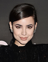 LOS ANGELES, CA - FEBRUARY 07: Sofia Carson attends Spotify's Best New Artist Party at the Hammer Museum on February 07, 2019 in Los Angeles, California.<br /> CAP/ROT/TM<br /> ©TM/ROT/Capital Pictures