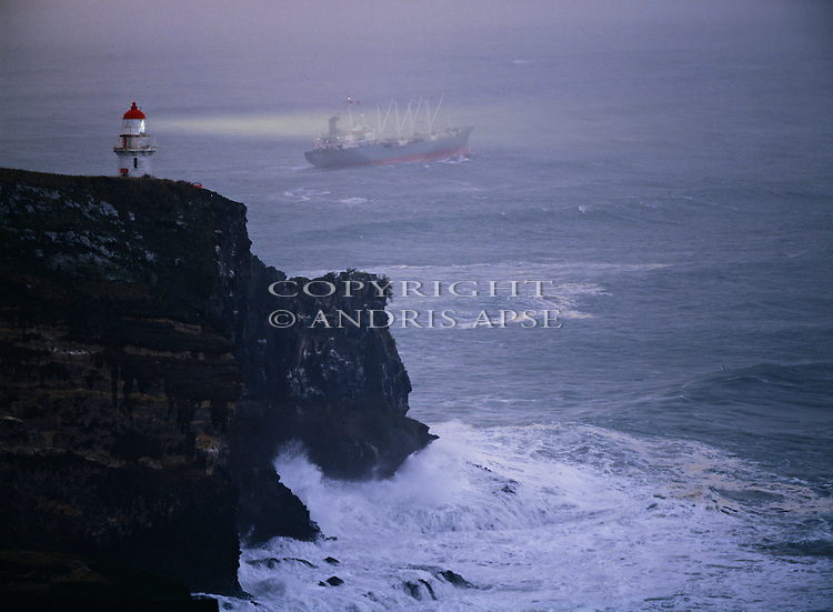 Lighthouse and ship off Taiaroa Head. Otago Peninsula. Otago New Zealand.