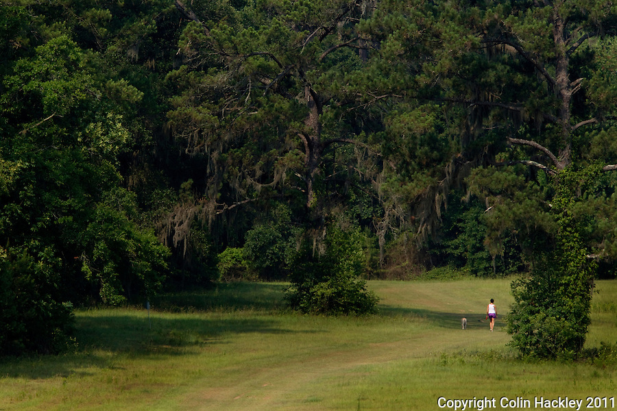 MICCOSUKEE GREENWAY: The trailhead provides easy access for walkers and pets alike..COLIN HACKLEY PHOTO