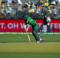 8th November 2019; Optus Stadium, Perth, Western Australia Australia; T20 Cricket, Australia versus Pakistan; Babar Azam of Pakistan digs a yorker out during his innings - Editorial Use