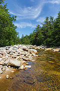 This is the location of where a spur line along the East Branch & Lincoln Railroad (1893-1948) crossed the East Branch of the Pemigewasset River in the Pemigewasset Wilderness, New Hampshire. This spur line began off the main line about a half of a mile above trestle No. 7, crossed the East Branch of the Pemigewasset River, and ended in the general area of Cedar Brook.