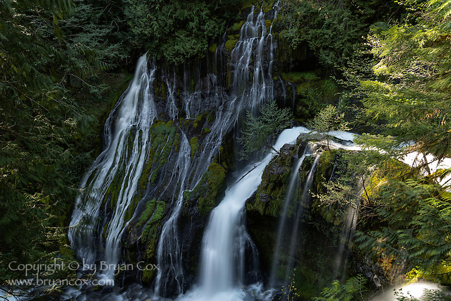 Panther Creek Falls, Gifford Pinchot National Forest