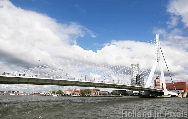 Nederland Rotterdam 2017. De Maas en de Erasmusbrug in Rotterdam. De brug is ontworpen door Ben van Berkel. ( De architect heeft bepaald dat een foto van de Erasmusbrug alleen gebruikt mag worden voor redactionele doeleinden. ) Foto Berlinda van Dam / Hollandse Hoogte