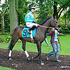 Lefty Got It Right with Ms. Sarah Shaffer aboard before The Fegentri Amateur Riders Club of America Race at Delaware Park on 10/3/15