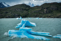 Icebwrgs in Lago Grey and Cuernas Paine peaks.Torres del Paine National Park, Chile. Argentina
