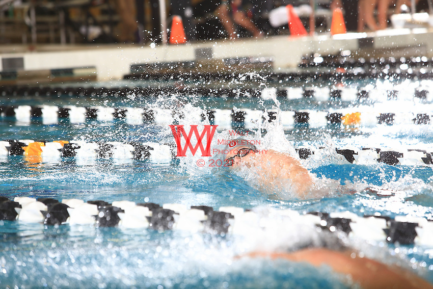 The Ohio State University men's swimming and diving team compete on the third day of the 2016 Big Ten Men's Swimming and Diving Championships. Hosted at Purdue University, West Lafayette, IN. February 26, 2016