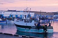 Europe/France/Bretagne/29/Finistère/ Saint-Guénolé: Retour des sardiniers au port à l'aube