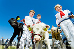 Conor, Tadgh and Sean Dalton (Asdee) taking part in the Young Handlers competition at the Kingdom County Fair, Ballybeggan racecourse, Tralee, on Sunday last
