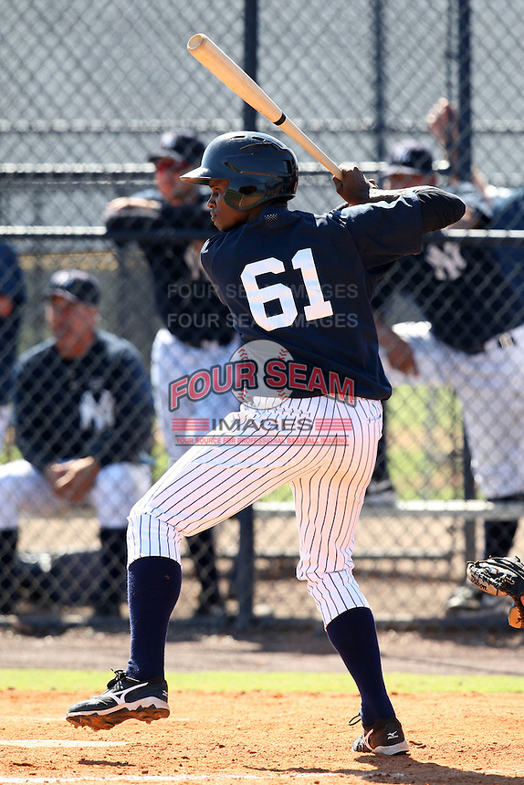 New York Yankees minor league outfielder Daniel Lopez (61) vs. the Pittsburgh Pirates in an Instructional League game at the New York Yankees Minor League Complex in Tampa, Florida;  October 8, 2010.  Photo By Mike Janes/Four Seam Images