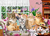 REALISTIC ANIMALS, REALISTISCHE TIERE, ANIMALES REALISTICOS, paintings+++++,KL4552A,#a#, EVERYDAY ,puzzle,puzzles