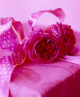 A pair of pink peonies are tied with a matching ribbon around a wrapped present