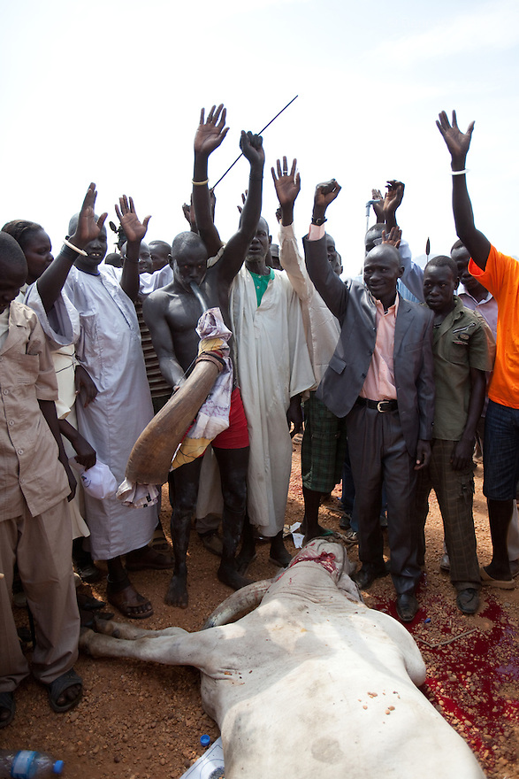 9 december 2010 - Juba, South Sudan - Spiritual and traditional leader slaughters a bull in a ritual for a peacefull separation during a rally in support of the independence referendum in Juba, South Sudan. According to South Sudanese officials, more than 2.8 million people have registered to vote in the referendum. The referendum on whether the oil-producing region should declare independence, scheduled for Jan. 9, is the climax of a 2005 peace deal that ended decades of north-south conflict - Africa's longest civil war that was fought over ethnicity, religion, ideology and oil and that killed 2 million people. Photo credit: Benedicte Desrus