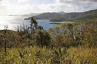 View looking west from the Tektite trail.<br /> St John.<br /> Virgin Islands National Park<br /> U.S. Virgin Islands