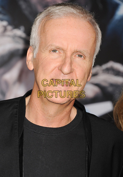 HOLLYWOOD, CA - DECEMBER 09: Director James Cameron arrives at the 'The Hobbit: The Battle Of The Five Armies' at Dolby Theatre on December 9, 2014 in Hollywood, California.<br /> CAP/ROT/TM<br /> &copy;TM/ROT/Capital Pictures