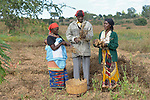 Agnes Tembo (right) and her husband Geoffrey Nkhambule, along with her mother-in-law Evelyn Nkhambule, harvest peanuts they've grown on their farm in Edundu, Malawi. Families in the village have benefited from intercropping, crop rotation, and composting practices they learned from the Malawi Farmer-to-Farmer Agro-Ecology project of the Ekwendeni Mission Hospital AIDS Program, a program of the Livingstonia Synod of the Church of Central Africa Presbyterian.