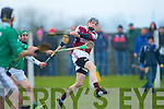 Adam Harty (causeway) solos the ball as Eric O'Connor and Jason Bowler )(ballyduff) give chase), in the Acorn Life under 21 County Hurling Championship on Saturday at Kilmoyley...