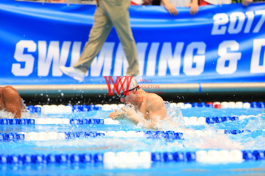 The Ohio State University men's swimming and diving team compete at the 2017 NCAA National Swimming and Diving Championships in Indianapolis, IN. March 25, 2017<br /> (Photo by Walt Middleton Photography 2017)