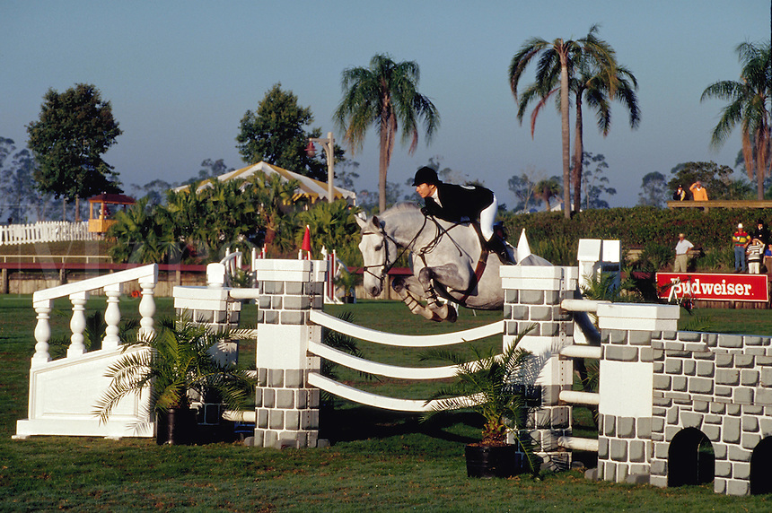 Rider jumps over fence, Winter Equestrian Festival, Wellington, Palm Beach, Florida