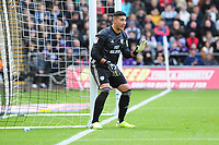 Neil Etheridge of Cardiff City in action during the Sky Bet Championship match between Swansea City and Cardiff City at the Liberty Stadium in Swansea, Wales, UK. Sunday 27 October 2019