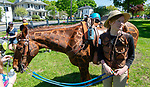 WINSTED,  CT-051819JS15- Kaela Martin, 15, of Sheffield, Mass., shows off her horse Chip, painted as a giraffe, following the during the 83rd annual Rotary Club Pet Parade along Main Street in Winsted on Saturday. Martin is a stable hand at Happy Acre Ranch in Southfield, Mass.  <br /> Jim Shannon Republican American