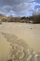 Desert flood - Ein Avdat, Negev Desert, Israel