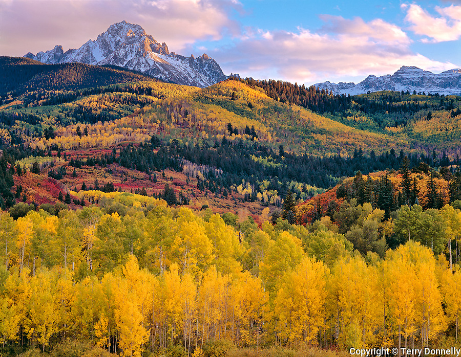 Uncompahgre National Forest, CO<br /> Afternoon clouds gather over Mt Sneffels and the San Juan peaks with fall colored aspens in the East Dallas Creek Valley below