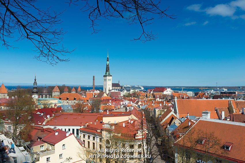 Panorama of Old Town of Tallinn, Estonia