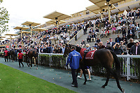LONGCHAMP, FRANCE - October 06, 2018: View from the Parade Ring of the Longchamp race track.