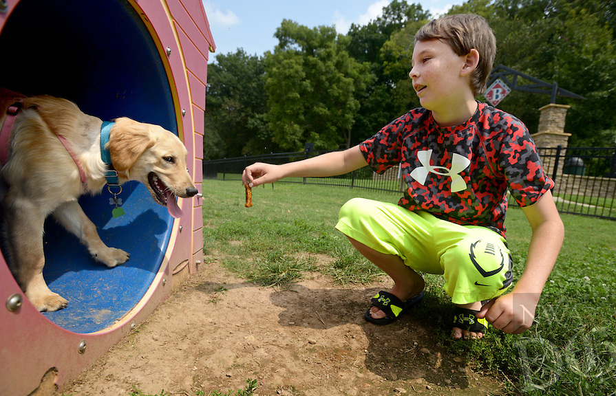 NWA Democrat-Gazette/BEN GOFF @NWABENGOFF<br /> Ryan Bullard, 11, of Bentonville offers a treat to his family's golden retriever Princess on Sunday, Aug. 30, 2015 while visiting the Bentonville Bark Park agility course.