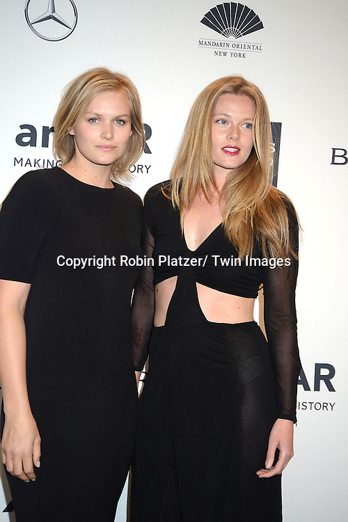 Danielle Redmond and  attends the amfAR New York Gala on February 5, 2014 at Cipriani Wall Street in New York City.