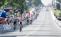 Dries de Bondt (BEL/Corendon Circus) wins the 72nd Halle - Ingooigem 2019 (BEL/1.1) > a race he won before in 2016<br /> <br /> 1 day race from Halle to Ingooigem (201km)<br /> <br /> ©kramon