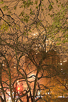 Trees in Central Park and Apartment Building on Fifth Avenue, Upper East Side of Manhattan,  on a Misty, Foggy Night....New York City, New York State, USA