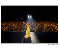 Celine Dion World Tour Opening Show in South Africa. (CNW Group/SONY BMG Music (Canada) Inc.)