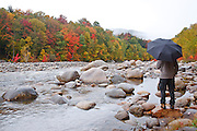 Man with umbrella standing on the side of the East Branch of the Pemigewasset River during the autumn months in Lincoln, New Hampshire USA.