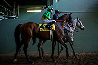 ARCADIA, CA - MARCH 11: Mastery #4, ridden by Mike Smith before the San Felipe Stakes at Santa Anita Park on March 11, 2017 in Arcadia, California. (Photo by Alex Evers/Eclipse Sportswire/Getty Images)