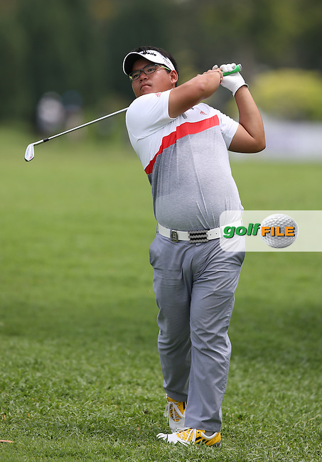 Panuphol Pittayarat (THA) plays from the rough on the15th having hot a Golffile photographer in the leg en route to a card of 63 during Round One of the The Championship 2014 from the Laguna National Golf & Country Club, Tampines, Singapore. Picture:  David Lloyd / www.golffile.ie