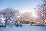 1701-04 GCS Snow_0091<br /> <br /> 1701-04 GCS Snow<br /> <br /> December 9, 2016<br /> <br /> Photography by Nate Edwards/BYU<br /> <br /> © BYU PHOTO 2016<br /> All Rights Reserved<br /> photo@byu.edu  (801)422-7322