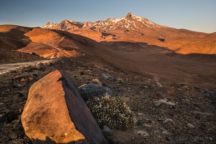 Dawn, Mt Ruapehu, Tongariro National Park, North Island, New Zealand - stock photo, canvas, fine art print
