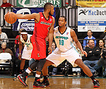 SIOUX FALLS, SD - MARCH 5:  Seth Tarver #19 from the Sioux Falls Skyforce applies pressure to Reggie Hamilton #4 from the Idaho Stampede in the first half of their game Tuesday night at the Sioux Falls Arena. (Photo by Dave Eggen/Inertia)