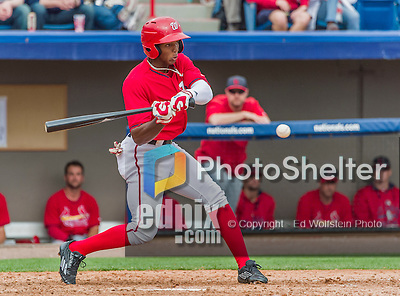 7 March 2015: Washington Nationals outfielder Rafael Bautista in Spring Training action against the St. Louis Cardinals at Space Coast Stadium in Viera, Florida. The Nationals rallied to defeat the Cardinals 6-5 in Grapefruit League play. Mandatory Credit: Ed Wolfstein Photo *** RAW (NEF) Image File Available ***