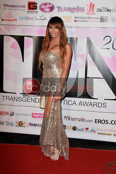 Honey Foxxx<br /> at the 2015 Transgender Erotica Awards, Avalon, Hollywood, CA 02-15-15<br /> David Edwards/DailyCeleb.Com 818-249-4998