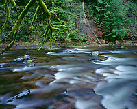 ORCAN_021 - USA, Oregon, Mount Hood National Forest, Salmon-Huckleberry Wilderness, Salmon River, a federally designated Wild and Scenic River, and surrounding forest in autumn.