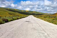 Bitterwater Road in Kern County, California.