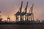 Cranes in the Hamburg docks in a snow flurry, Hamburg, Germany